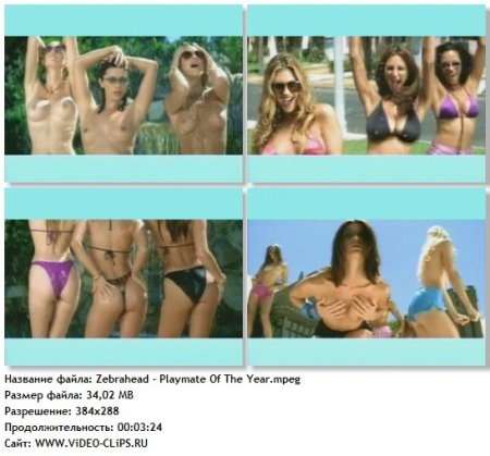 Zebrahead - Playmate Of The Year
