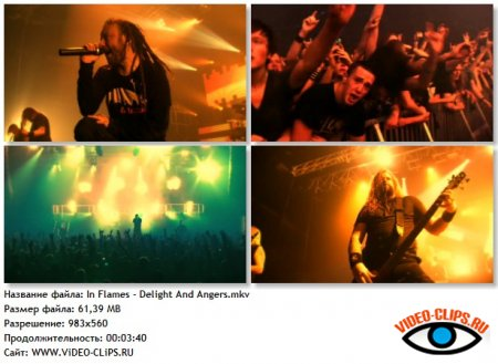 In Flames - Delight And Angers