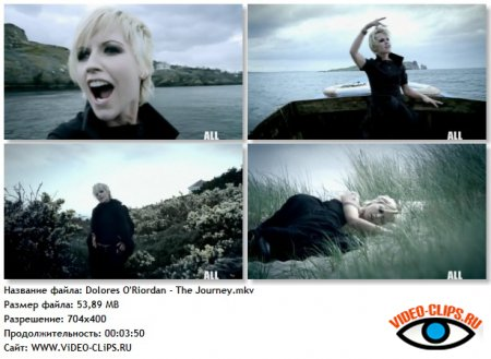 Dolores O'Riordan - The Journey