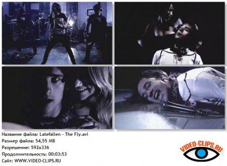 Latefallen - The Fly